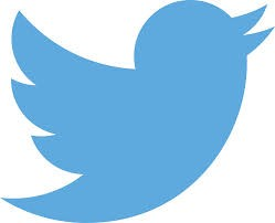 【css】Twitterのウィジェットの幅と高さを調整する