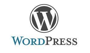 WordPressの記事内の最初の画像を出力する方法
